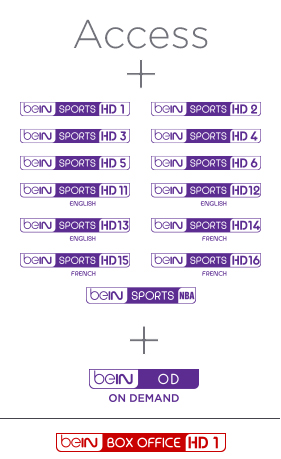 Bein Top Sport Advance Package 1 Year Subscription
